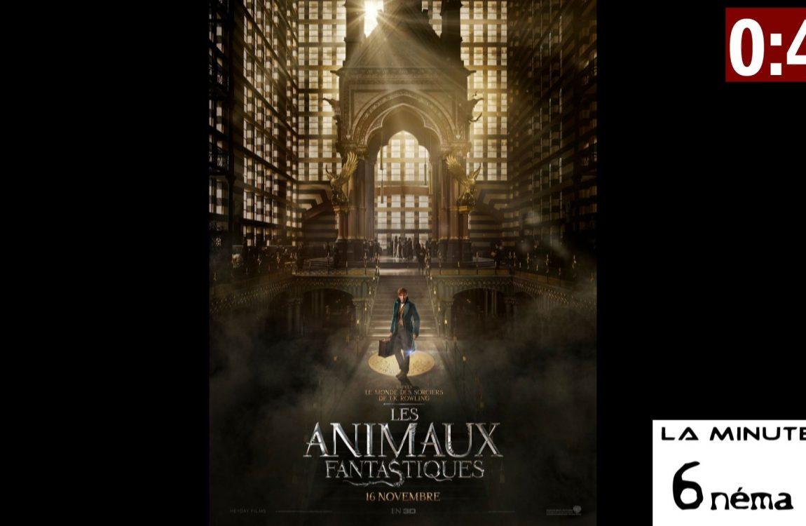 La Minute 6nema N°008 – Les animaux fantastiques (sans spoiler)